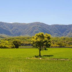 Taitung County