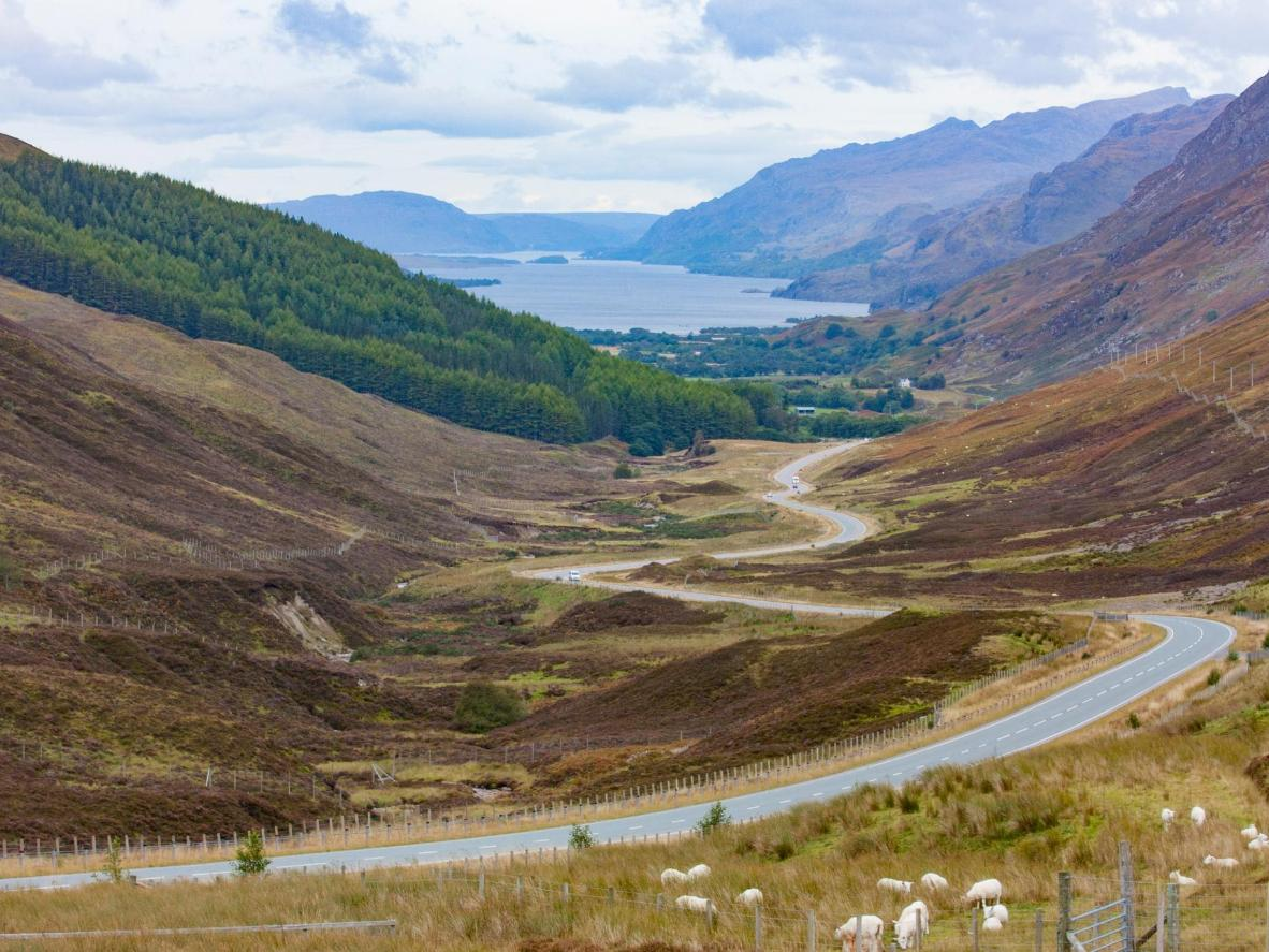 Drive past lochs, mountains and plains of heather in the Cairngorms National Park