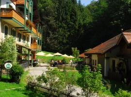 Naturidyll Hotel Hammerschmiede, Anthering