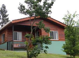 Toucan Paradise, Monteverde