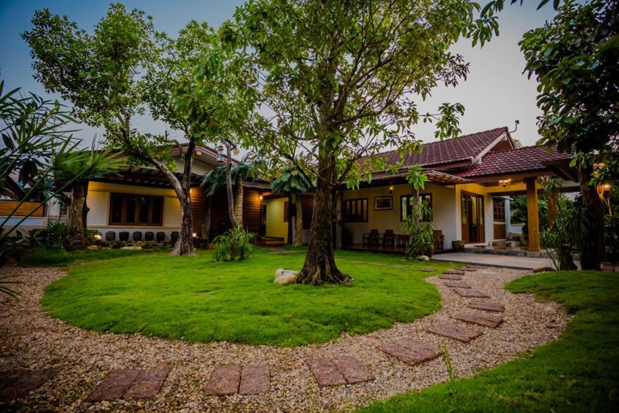 Tree Home Plus