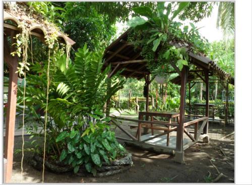 Taylor's Place Tortuguero Costa Rica