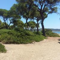 Sxinias Resort