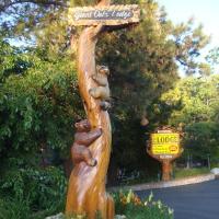 Giant Oaks Lodge