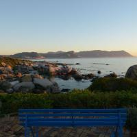 Bosky Dell on Boulders Beach
