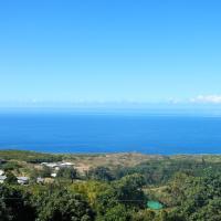 Coffee Villa in Tropical Paradise